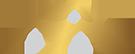 Virtuous Construction LLC Logo